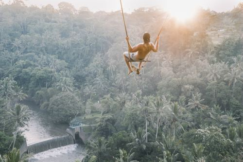 Person swinging on top of jungle